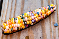Glass Gem Corn-4765